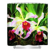 Orchid Flowers Color 1 Shower Curtain