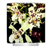 Orchid Fresco Shower Curtain