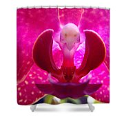 Orchid Genie Shower Curtain