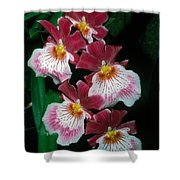 Orchid Group Shower Curtain