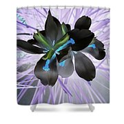 Orchid Inverted Shower Curtain