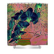 Orchid Japanaise Shower Curtain