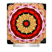 Orchid Kaleidoscope 6 Shower Curtain