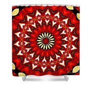 Orchid Kaleidoscope 9 Shower Curtain