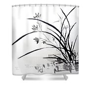 Orchid Nobility Shower Curtain