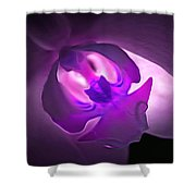 Orchid Of Fantasy Shower Curtain