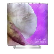 Orchid Of Inspiration Shower Curtain