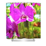 Orchid Oil Painting Shower Curtain
