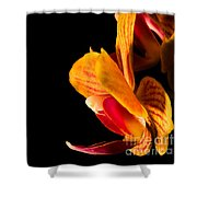 Orchid Petals Shower Curtain
