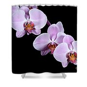 Pink Orchid I Shower Curtain