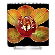 Orchid Splendor Shower Curtain