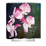 Orchid Study IIi Shower Curtain