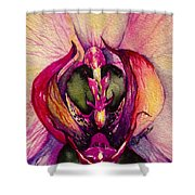 Orchid Tabernacle Shower Curtain