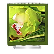Orchid With Yellow And Green 2 Shower Curtain
