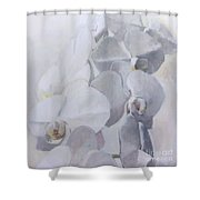 Orchidee Blanche Des Miracles Shower Curtain