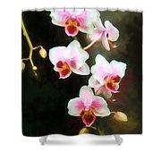 Orchids Abound Shower Curtain