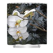 Orchids And Water Shower Curtain