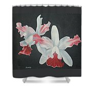 Orchids In Flight Shower Curtain