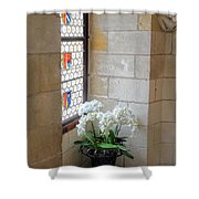 Orchids In The Chateau Shower Curtain