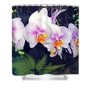 Orchids Of Hawaii Shower Curtain