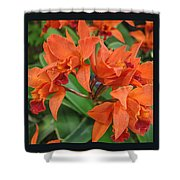 Orchids Vertical Triptych Shower Curtain