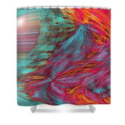 Order Of The Universe Shower Curtain