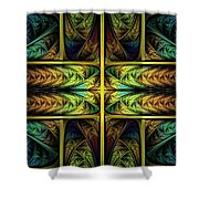 Order Out Of Chaos Shower Curtain