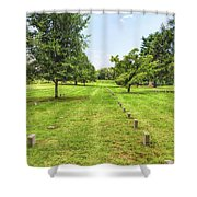 Ordered Rows Shower Curtain