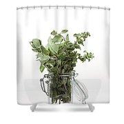Oregano Shower Curtain