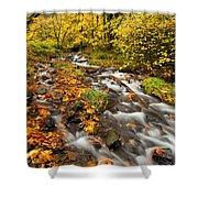 Oregon Autumn Beauty Shower Curtain