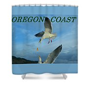 Oregon Coast Amazing Seagulls Shower Curtain