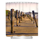 Oregon Coast Pilings Shower Curtain