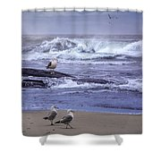 Oregon Coastal Morning Shower Curtain