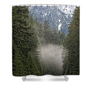 Oregon Highway Mist Shower Curtain