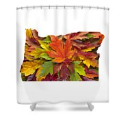 Oregon Maple Leaves Mixed Fall Colors Background Shower Curtain