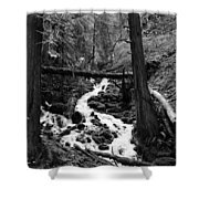 Oregon River Black And White Shower Curtain