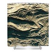 Oregon Sandstone Shower Curtain