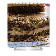 Organic Coffee And Pistachio Cake B Shower Curtain