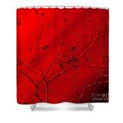 Oriental 2 Shower Curtain