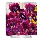 Oriental Orchid Garden Shower Curtain