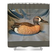 Original Blue Winged Teal Sculpture  Shower Curtain