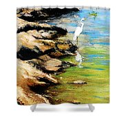 Original Fine Art Painting Pool Edge Gulf Coast Florida Shower Curtain by G Linsenmayer