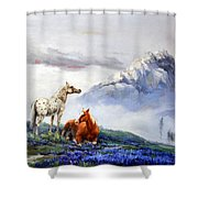 Original Oil Painting On Canvas Two Horses Shower Curtain