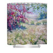 Original Oil Painting - Spring Meadow In Sussex Shower Curtain