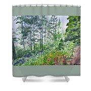 Original Watercolor - Summer Pine Forest Shower Curtain