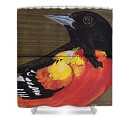 Oriole 6 Shower Curtain