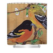 Orioles 1 Shower Curtain