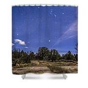 Orion And Sirius Rising Shower Curtain