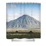 Orizaba Shower Curtain
