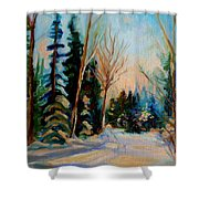 Ormstown Quebec Winter Road Shower Curtain